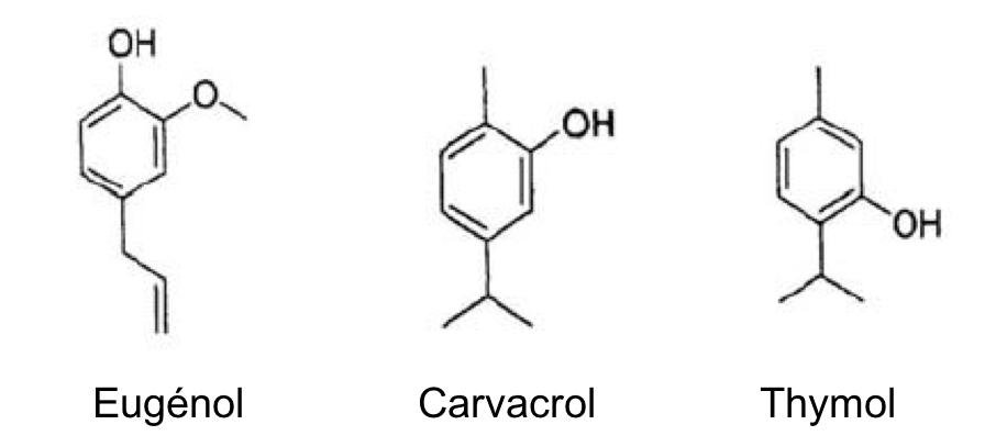 Structure chimique des principaux phénols