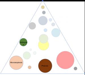 Triangle aromatique des molécules antifongiques