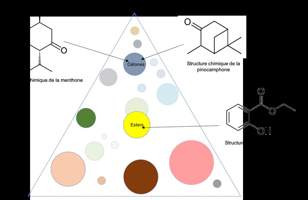 Composés présentant une neurotoxicité, dans le triangle aromatique.